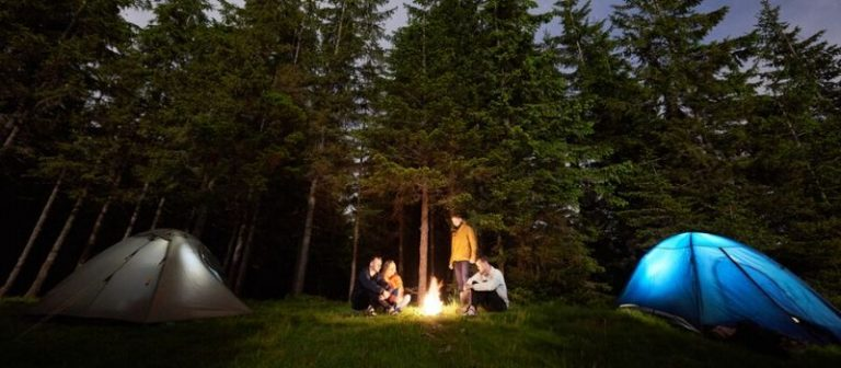 Best Camping and RV Generator Reviews – Power Up Your Tent